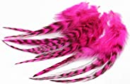 Tigofly 30 pcs/lot UV Hot Pink Black Barred Grizzly Rooster Hackles Streamer Fly Tying Hackle Feathers Materia