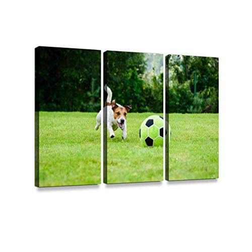 (LanimioLOX Funny Dog Playing with Football (Soccer Ball) as Forward player3 Pieces Print On Canvas Wall Artwork Modern Photography Home Decor Unique Pattern Stretched and Framed)