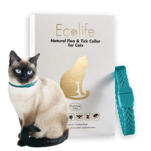Ecolife Flea and Tick Repellent Collar for Cats (One Size, Teal) (Cheap Flea Medicine That Works For Cats)