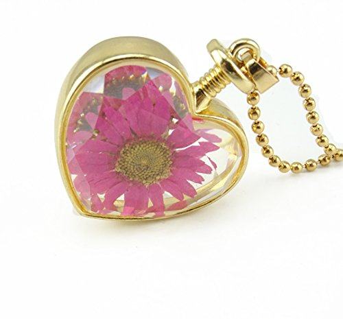 Honbay Dried Flower Heart Glass Golden tone Locket Pendant Necklace with Bead Chain