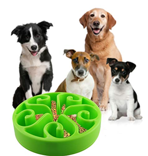CEESC Dog Bowl Slow Feeder for Puppy Rabbit Sma...