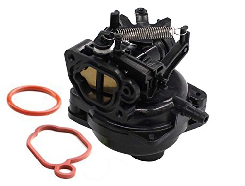 Fuerdi 799584 Carburetor for Briggs & Stratton Engines 550EX 09P702 9P702 Model