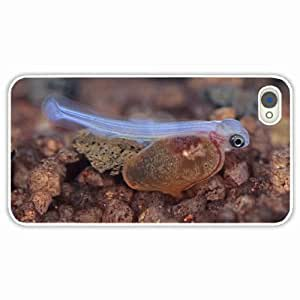 iPhone 4 4S Black Hardshell Case fish bottom water White Desin Images Protector Back Cover