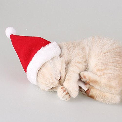 Kocome Pet Dog Cat Santa Hat Scarf Christmas Xmas Red Holiday Costume Apparel Lovely (2#)
