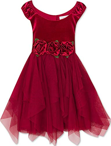 Rare Editions Big Girls 7-16 Holiday Cascading Mesh Rose Trim Velvet Party Dress,7