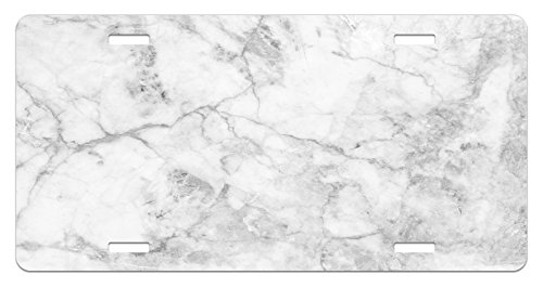 Ambesonne Marble License Plate, Fractured Lines Stained Grunge Surface Effects Ceramic Style Background Artful Motif, High Gloss Aluminum Novelty Plate, 5.88 L X 11.88 W Inches, Grey Dust