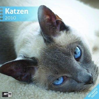 Katzen 30 x 30 cm 2010