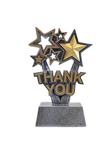 Resin Award Plaque (Silver Thank You Trophy - 6 Inches Tall - Gold Star Sponsor Award - Corporate, Sales, Employee, School, Teacher or Business Awards - Engraved Plate Upon Request - Decade Awards Exclusive)