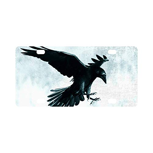 INTERESTPRINT Halloween Gothic Medieval Black Raven Bird in Moonlight Automotive Metal License Plate Cover, Car Tag for Woman Man- 12