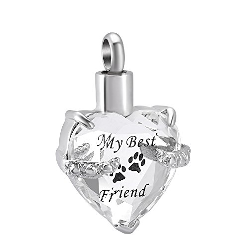 constantlife My Best Friend Glass &Stainless Steel Ashes Keepsake Urn Necklace Charm Pendant (Clear and ()