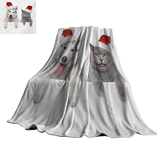 RenteriaDecor Christmas,Plush Throw Blanket Cute Dog and Cat in Santa Red Hats Funny Puppy and Kitty Domestic Pet Animal Lightweight Plush Throws 60