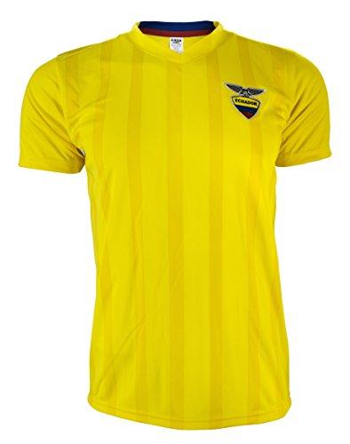 Rass Sport Soccer Jersey Copa America Centenario - ECUADOR - MDYG0932-YEL-L/XL (Us Soccer Centennial compare prices)