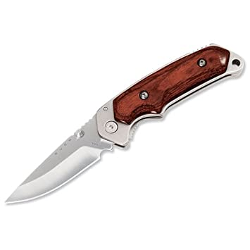 Buck Alpha Hunter Cuchillo Rosewood Handle 154cm Steel Plain ...