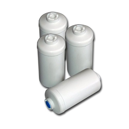 Set of 4 PF-4 Fluoride Replacement Elements for ~Berkey Earth/ Ceramic Water Filters ONLY~ HOME-APP