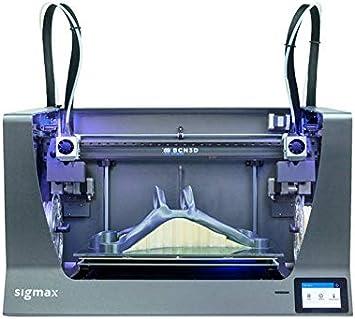 BCN3D SIGMAX R19 Impresora 3D - FFF: Bcn3d: Amazon.es ...