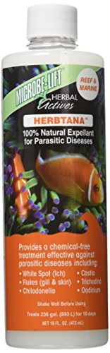 Ecological Labs AEL20907 Microbe Lift Herbtana Salt Water Conditioners for Aquarium, 16-Ounce by Ecological Labs