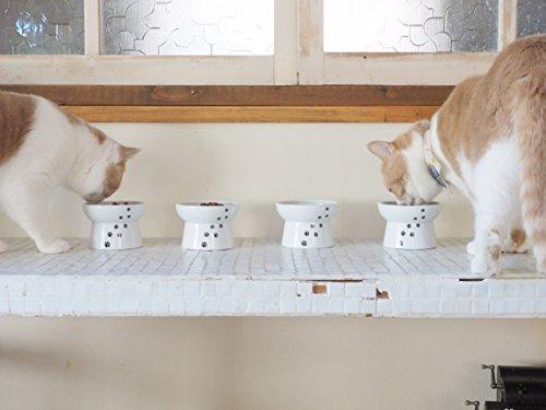 Necoichi Raised Cat Food Bowl (Cat)