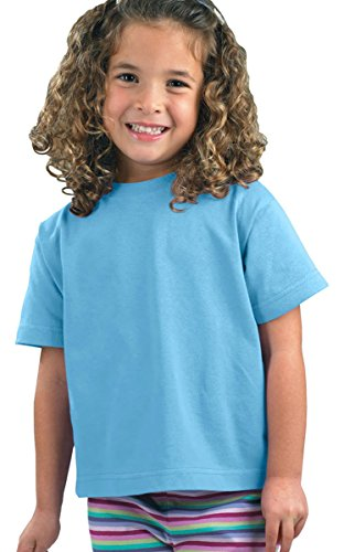 Rabbit Skins Toddler Short-Sleeve T-Shirt (M-3301) Tee Available in 31 Colors,5T/6T,Light (Light Blue Toddler Shirts)