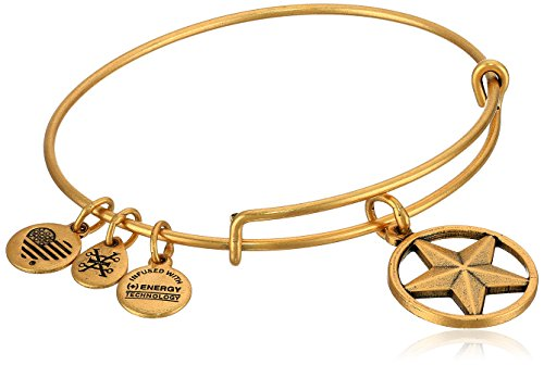 Alex Ani Strength Expandable Bracelet