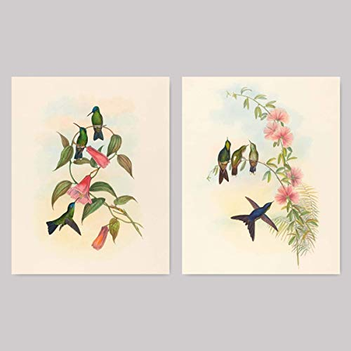 ((Set of 2) Hummingbird Prints, Bird Wall Art (Bedroom Botanical Birds, Tropical Home Decor Artwork) – 8x10 Unframed)