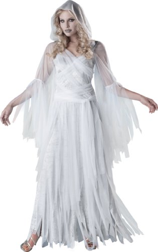 InCharacter Costumes Women's Haunting Beauty Ghost Costume, White/Grey, Medium]()