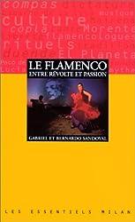 Le flamenco, entre révolte et passion