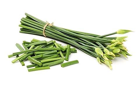come eliminare il mio erba cipollina dating account Sud-est asiatico sito di incontri