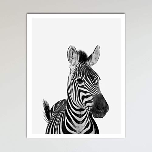 Zebra Zoo Animal Nursery Print - Animal Prints - Neutral, used for sale  Delivered anywhere in USA