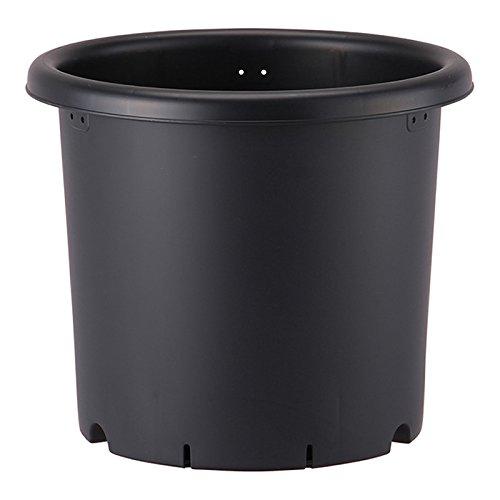 アップルウェアー 【20個】 10号 ブラック 菊鉢 ポット 鉢 B06XHJKLGX