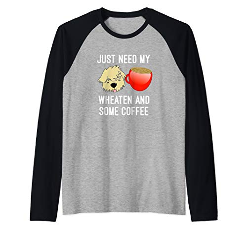Just Need My Wheaten And Some Coffee Mug SCWT Dog Raglan Baseball - Soft Wheaten Mug Coated Terrier