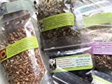 Spice Sampler ~ Rootbeer 10 ~ Spices to make Root beer ~ Signature confirmation on package ~ Ravenz Roost Herbs with special info on most labels