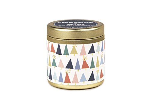 Paddywax Kaleidoscope Collection Scented Travel Tin Candle, 3-Ounce, Cinnamon & Spice - Fragranced artisan soy wax candle hand-poured in America 3-Ounces of Paddywax signature soy wax Cinnamon & spice scent created with all Natural fragrances - living-room-decor, living-room, candles - 41Y9YDnBn9L -