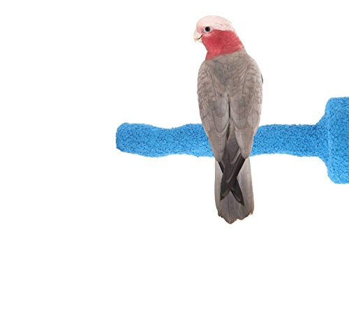 Sweet Feet and Beak Thermal-Lite Natural Patented Perch, Medium - Blue- Perfect for Keeping your Bird's Feet and Beaks Healthy by Sweet Feet and Beak