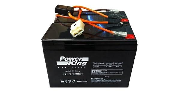 Amazon.com: Razor Baterías de 12 V 7 Ah – Patinete eléctrico ...