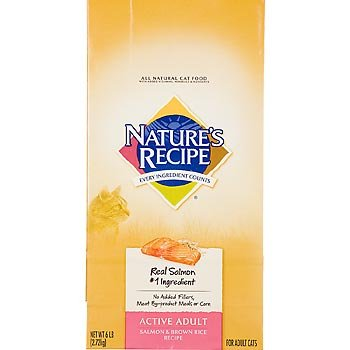 Nature's Recipe Salmon and Brown Rice Active Adult Cat Food, 6 lbs., My Pet Supplies