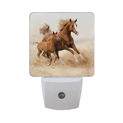 - xiaodengyeluwd 2 Pack Purebred White Arabian Horse with Pony Baby in Desert Sand Field Auto Sensor LED Dusk to Dawn Night Light Plug in Indoor for Adults