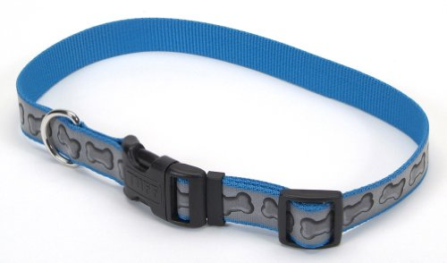 Lazer Brite Reflective Dog Collar, 18-26-Inches, Turquoise with Bones, My Pet Supplies