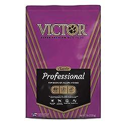 41Y9pX7FSVL. SS250  - Victor Classic - Professional, Dry Dog Food