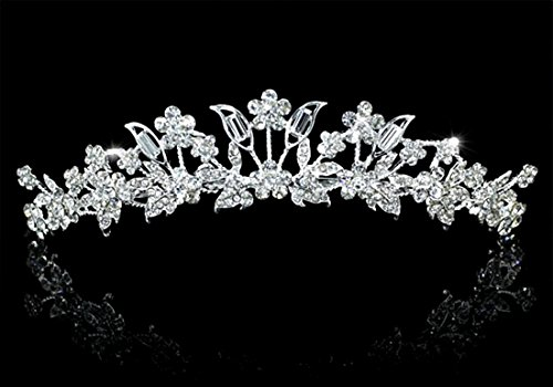Exquisite Wedding Bridal Bridesmaid Prom Pageant Flower Leaf Crystal (Exquisite Silver Plated)