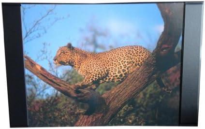 Schreibtischunterlage 68x44cm / mit Leopard