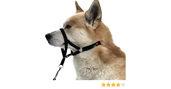 Trixie - Arnés-Bozal Guía de entrenamiento para perro (L-XL ...
