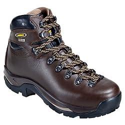 Asolo Men's TPS 520 GV Evo Boot in Chestnut for Backpacking, Hiking, Trekking