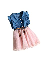 Changeshopping(TM) Children Girl Princess Party Tutu Lace Bow Rose Flower Dress