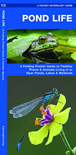 Pond Life: A Folding Pocket Guide to Familiar Plants & Animals Living in or Near Ponds, Lakes & Wetlands (Pocket Naturalist Guides)