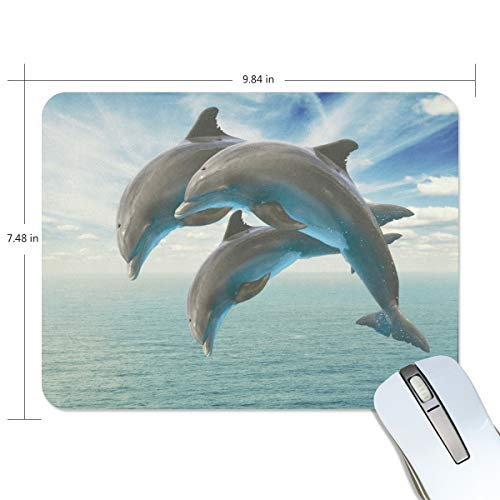 Mohado Three Dolphins Jump Out of The Water Non-Slip Computer Mouse Pad with Neoprene and Anti-Fray Cloth Artist Painting for Computer, Laptop, Office & Gaming