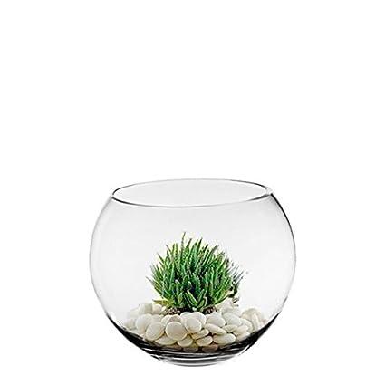 Amazon Cys Excel Glass Bubble Bowl Fish Bowl Hand Blown Glass