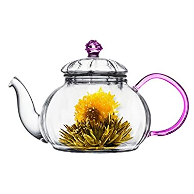 Tea Beyond Heat resistant Glass Teapot Juliet, 20-Ounce