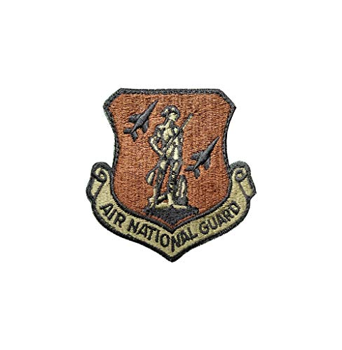 US Air Force Air National Guard OCP Scorpion Spice Brown Patch with Hook Fastener