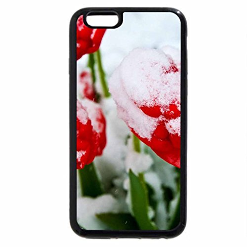 iPhone 6S Case, iPhone 6 Case (Black & White) - Frosting Tulips