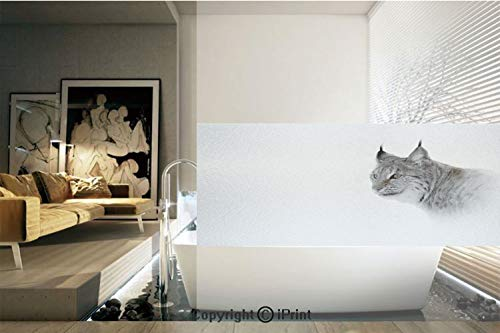 Ylljy00 Decorative Privacy Window Film/Lynx in Central Norway Wild Cat North Cold Snowy Mountain Carnivore Predator/No-Glue Self Static Cling for Home Bedroom Bathroom Kitchen Office Decor Grey White